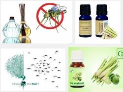 Đuổi muỗi hiệu quả với các loại tinh dầu đến từ thiên nhiên
