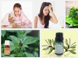 Giảm đau đầu, mất ngủ hiệu quả với 4 loại tinh dầu tự nhiên